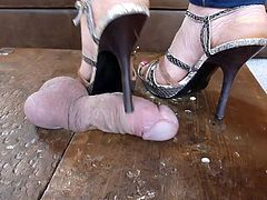 Mistress has some fun with her chastised Slav