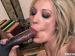 Seductive white chick Amy Brooke is brutally fucked in her asshole by a horny black stud