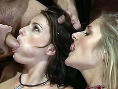 Very hot scene with a bit of everything and the all-important cum shots of course