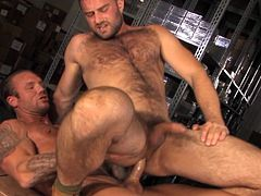 2 muscled guys in action, enjoy