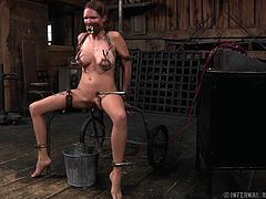 Rain DeGrey is tied to a rolling torture device. Her nipples are clamped extremely tight and her mouth is wrapped around a tube for easy cock insertion. She has a bucket placed under her cunt for when she loses control from the electrocution.