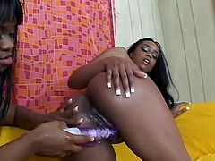 Black babe Sandi and Brown are having a lot of fun together. These chocolate cunts don't need cock to satisfy each other. They have their sex toy and damn they know how to use it. After some lustful kissing and pussy fingering one of the whores spreads her legs and the other one fucks her shaved pussy