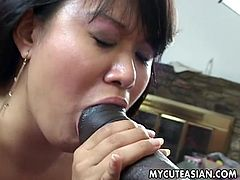 Fatty asian hottie enjoys deep penetration from a really huge black dick