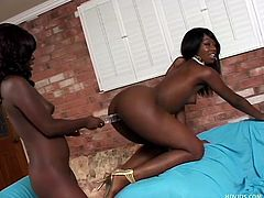 These two horny black lesbo babes fuck each other wild. Watch as they shove a clear double dildo in their pussies and scissor each other. They fuck like dirty whores and eat pussy. They are horny black dream girls.