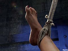 Skinny babe gets hanged up upside down. After that the guy pinches her nipples and fingers her warm pussy.