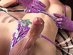 Ravishing tranny plasuring a cock with her tongue