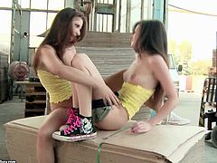 Two hot girls in yellow shirts in hot lesbian scenes