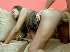 Ebony hottie with an amazing slim body and long legs in provocative black lingerie enjoys in getting her hands on a black bazooka on the couch and sucking it good