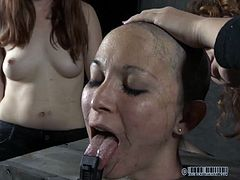 This dumb bitch deserves some humiliation and a haircut. Well she's receiving both! They've secured her in a bondage device, kept her mouth opened and started to play with scissors and a shaving machine on her head. Yeah, look at her what a nice haircut she receives. doesn't she looks better like that?