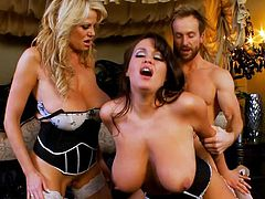 These busty milfs are having huge cock drilling them hard and making them scream