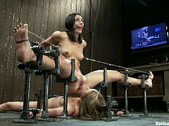 There two girls are going to be forced to do some lesbian action as they are placed in some special bondage devices.