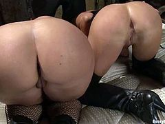 These two chicks love anal sex more than anything else. They toy their asses with big dildos and get fucked by a guy.