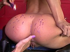 Superb hotties are having amazing time stimulating eachother in dirty softcore porn