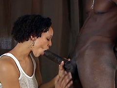 Naughty short-haired black wife gets on her knees and wraps her lips around a her man's huge thick cock till he finally cums in her whorish mouth.