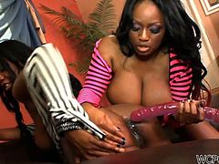 Two big ass lesbian ebonies called Jada Fire and Jessica Grabbit are going to put one hell of a dyke performance.