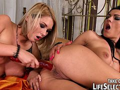 See a spectacular compilation of lesbian sex where some hot blondes and naughty brunettes munch and dildo their pussies into breathtaking orgasms.