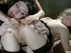 Three desirable and smoking hot babes Loreley Lee, Proxy Paige and their horny friend are going so wild about each other. A lot of fetish shit in one video!