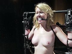 This sassy and naughty blondie Sofia Lauryn is being exposed to some BDSM fantasies. There are many tools that can bring her unforgettable pain.