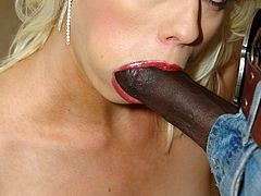 Lorelei Lee sucking hard a couple of black cocks