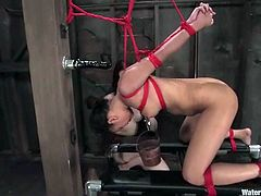 Annie Cruz and her Asian sex slave make great show. Asian gets hosed and then fucked with the strap-on. Later on they continue in an aquarium.