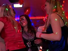 Tainster sex clip will make you jizz tonight. Horn-mad and seductive light and black haired bitches are tried of dancing. It's high time to relax by providing each other's wet juicy pussies with cunnilingus at this awesome orgy party.