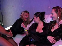 Two sizzling hussies in steamy lingerie and stockings bend over a couch to welcome hard fuck from behind in doggy pose, other hoes in turn give oral fuck to aroused dudes in sultry group sex video by Tainster.