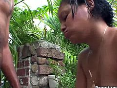 Brutal black stud lover rounded fat booties. So he loses his mind when he sees Lisy half naked on a backyard. He seduces her and screwed mercilessly.