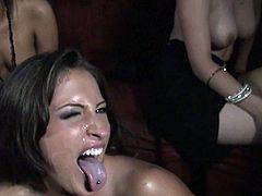 Nasty babes are wild when having huge cock drilling them in dirty hardcore group action