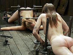 Isis Love and Missy Minks are going to go through some crazy stuff in this video where they endure extreme bondage.