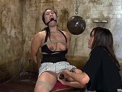 what a hot lesbian BDSM this is! Sexy Asian siren Dragon Lily gets tied up and her legs are spreads wide with some chains. Princess Donna Dolore apparently hates Asian girls!