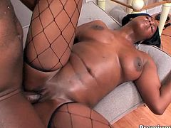 She is black chocolate mommy with curvy body. Barbie is wearing fishnet stockings fucking passionately in a hardcore Premium HDV porn clip. Enjoy watching.
