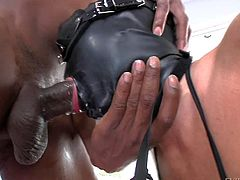 Dirty and arousing babe Julia Ann gets a black mask on her face, gets covered by it and dressed up in a fetish outfit for a hot sex session with Tony Capone