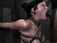 She never thought things get get so rough and enjoy it too! Veruca is one of those fragile brunettes with a pair of sweet breasts and a sensual mouth. Now the chick has her breasts tied and squeezed hard and between her innocent lips she has a big hard black cock that's roughly fucking her. That's bdsm Veruca!