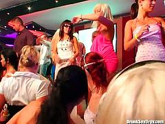 After steamy dances, spoiled white hussies kneel down in front of aroused daddies to oral fuck their sturdy cocks with pleasure in steamy group sex video by Tainster.