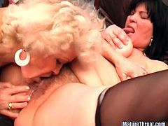 These two mature women have not lost the whore in them and here they are, sharing a dude's hard cock in this awesome hardcore sex scene!
