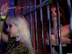 Sizzling bitches oral stroke each other's perky tits through a cage, while other hussies are busy giving each other a tongue fuck in insane group sex orgy by Tainster.