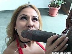 Adorable hot babe loves feeling black cock drilling her ass in nasty interracial hardcore