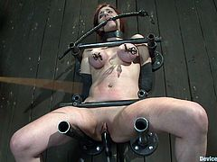 A hot redhead chick with big tits gets her pussy fucked by a machine and her nipples tortured with clamps and shit. Check it out!
