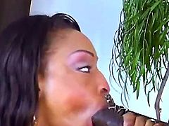Black porn with luxurious ebony chick Carmen Hayes is before you! Hottie is giving unforgettable fellatio and titjob to thug before feeling his monster cock in pussy.