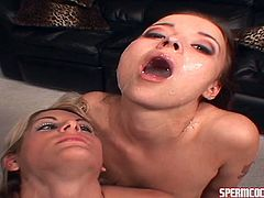 Hot babes are having warm cream dripping their faces after sucking large cocks