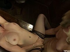 Busty brunette Bella Rossi is having fun with blonde shemale Franchezka in a barn. They caress each other and have oral sex and then the tranny smashes Bella's snatch with her prick.