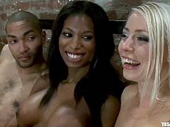 Two smoking hot bunnies are sharing this black dude. One of them is a shemale and her name is Natassia Dream, who enjoys sharing his asshole with Lorelei Lee.