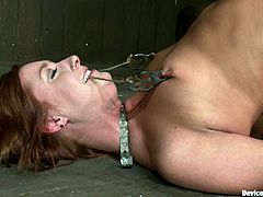 See this pretty and lovely chick called Charlie Ann going through some pretty fucked up BDSM stuff and lots of toying in this vid.