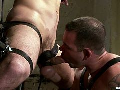 Make sure you have a look at this gay bondage video where two horny guys torture and fuck one another.