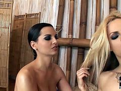 DDF Network sex clip provides you with two appetizing slim lesbos. Hotties with sweet boobs are just gorgeous. Mesmerizing blondie and kinky brunette thirst for orgasm. So all naked chicks start spooning, tickling and licking each other's wet juicy cunts passionately as if it's their last day.