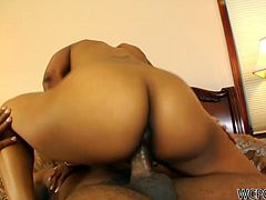Gosh, don't miss a chance to jerk off all night long with WCP Club sex clip. Wondrous curvy black chick boasts of her appetizing smooth and rounded ass. She wanna be fucked in a standing position, which turns then into a tough doggy fuck. Terrific dick rider with sweet tits is surely a versatile whore.