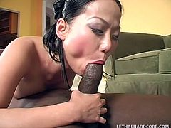 She's a milf that likes big black cocks. Niya is Asian, but she rather prefers those massive black cocks. Being hard to please, the cute whore fucks herself and then, receives a tongue in her shaved vagina. Now she forms a 69 with the guy and fills her pretty mouth with his dong.
