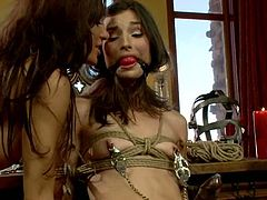 This female domination video has busty Gia Dimarco having fun with Kristine Kahill in the office, tying her up, fucking her pussy with her strapon and more.