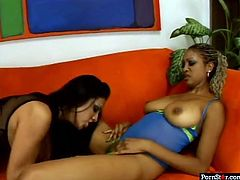 If you're a fan of horny black gals, this Pornstar sex clip is surely for you. Zealous black nymphos with nice boobs and big asses will show you what a real lesbian love is. Zealous gals love tickling and licking each other's wet juicy cunts to gain dozen of pleasure in a flash.