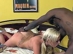 Fascinating interracial porn with Molly Rae and Wesley Pipes is before you. White girl gets cunnilingus from thug before sucking his penis and having vaginal screw with him.